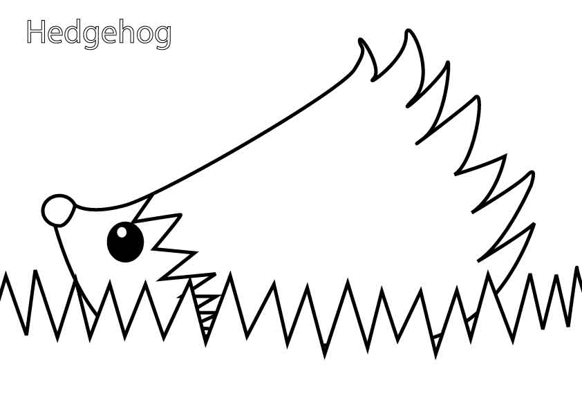hedgehog-colouring-picture